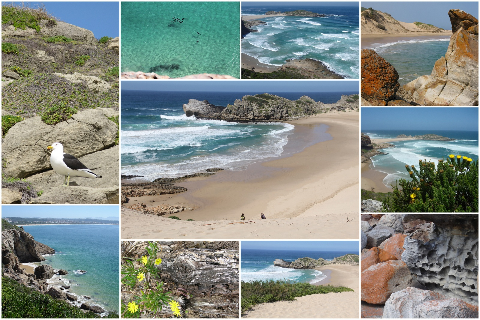 Hiking the Robberg